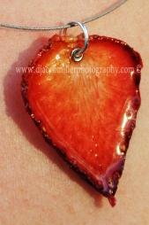 Strawberry in the Sun